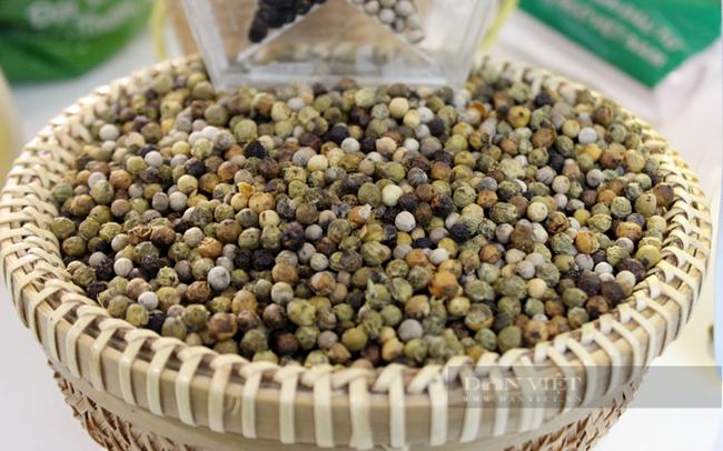 3 lý do đẩy giá tiêu tăng từng ngày, sắp cán mốc 100.000 đồng/kg từ góc nhìn của một nông dân